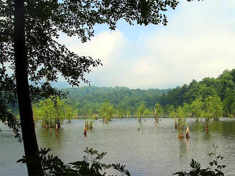 Arvah Lake: top destinations for nature lovers.