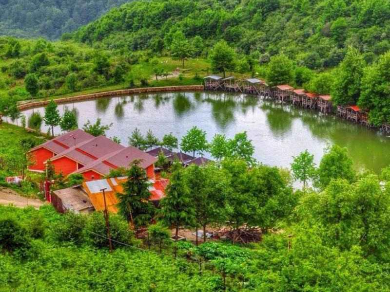 Swan Lake - Ramsar