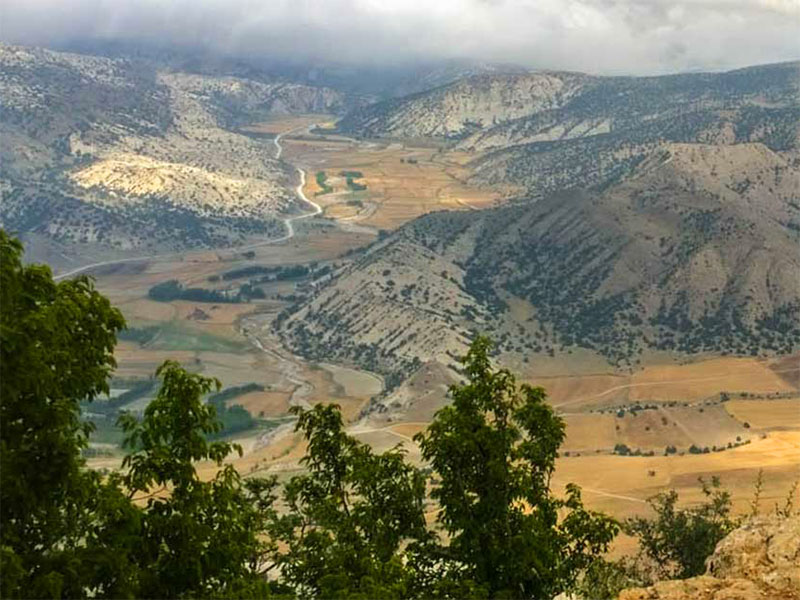 Hyrcanian Forests - Golestan