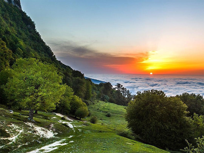 Hyrcanian Forests - Jahan-Nama