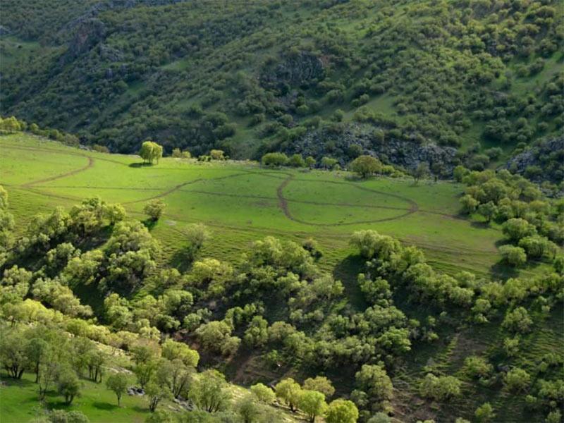 Zagros-oak-forests-Iran